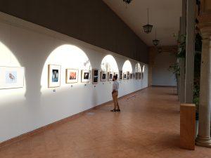 Reapertura de la galería del Claustro con la exposición de proyectos de esculturas efímeras